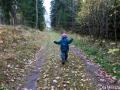 Alvin skogspromenerar i Dalstorp