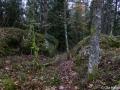 Fornborgen i Hulared kallad Jättaberget 1