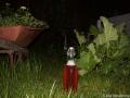 Första flaskan rabarbersaft